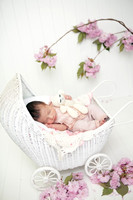 Newborn baby girl portraits by Bailey Fox photography. Professional portraits taken in Providence RI