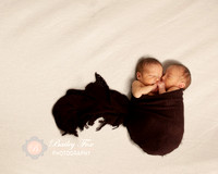 ri newborn photography photographs twins
