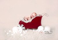 Lyons newborn baby photography