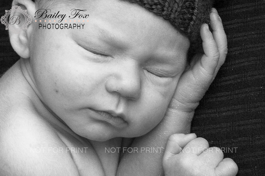 newborn baby boy, newborn portraits taken in ri by bailey fox photography.  Bailey photographs out of her west greenwich ri portrait studio.   bailey also offers wedding and  family photography.