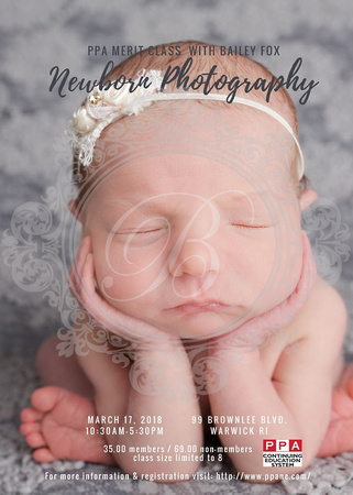 Warwick ri newborn photographer is offering a workshop as a merit class with PPA and PPANE