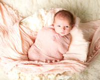 RI newborn photography by portrait artist bailey fox